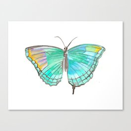 Fluidity Turquoise Watercolor Butterfly  Canvas Print
