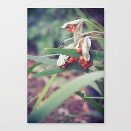 Soft Autumn #2 Canvas Print