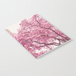 New York City - Central Park - Cherry Blossoms Notebook