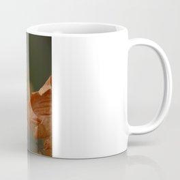 Copper Beech Coffee Mug