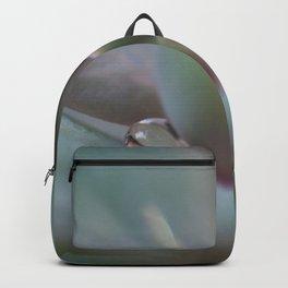 Beautiful Succulent Backpack