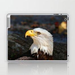 In The Eye Of A Raptor Laptop & iPad Skin