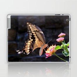 Swallowtail Overexposed Laptop & iPad Skin
