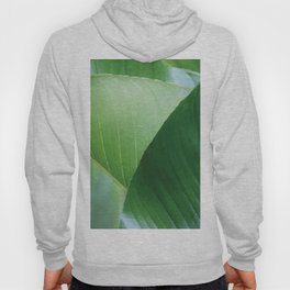 Big Banana Leaves green Hoody