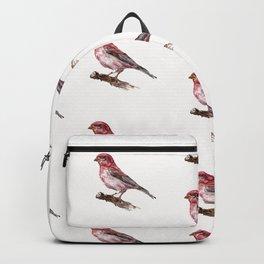 Purple Finch Backpack