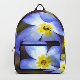 Four tiny bluet flowers Backpack