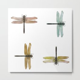 Mystical Dragonfly Graphic Pattern Metal Print