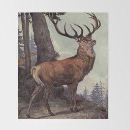 Vintage Red Deer Painting (1909) Throw Blanket