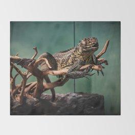 Languid Lizard Throw Blanket