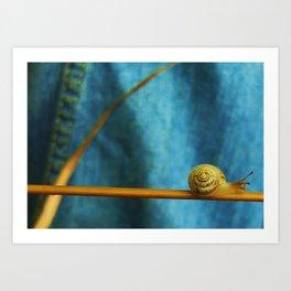 Snail on Straw Art Print