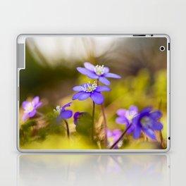 Wildflowers Spring Forest #decor #society6 #buyart Laptop & iPad Skin