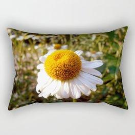 Airiness Rectangular Pillow