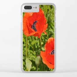 poppies nature Clear iPhone Case