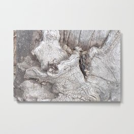 Fabulous Old Gnarled Tree Knot, Old Grey Tree, Woderful Texured Tree Metal Print