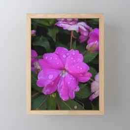Morning Dew Framed Mini Art Print