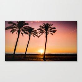 Orange bright sunset at the beach between palms Canvas Print