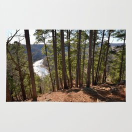Climbing Up Sparrowhawk Mountain above the Illinois River, No. 7 of 8 Rug