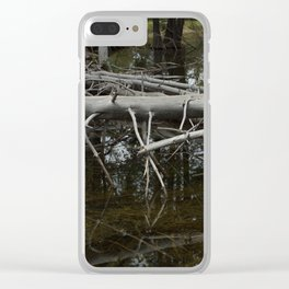 Mirror Pond Clear iPhone Case