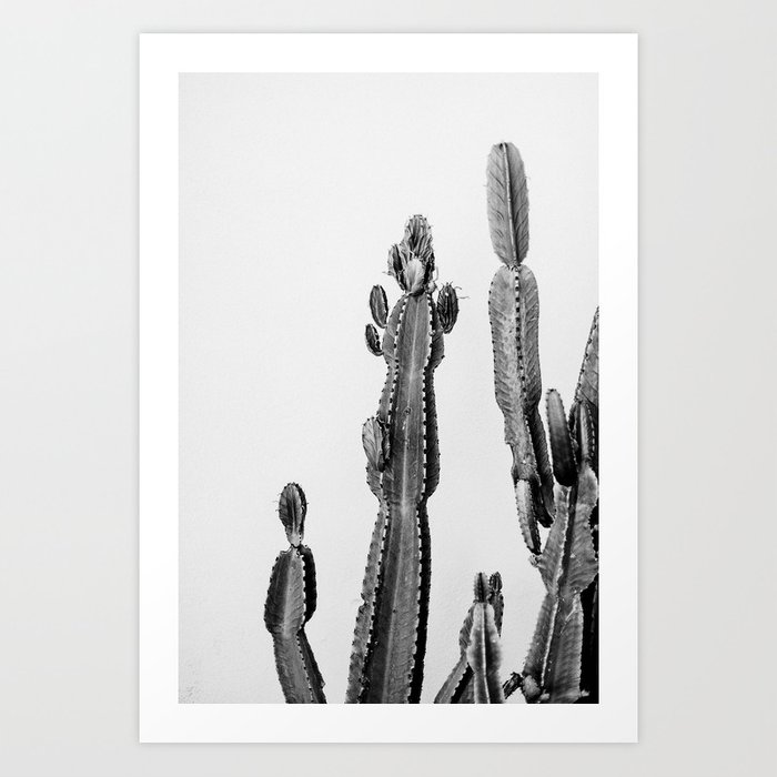 vintage cactus friend Art Print