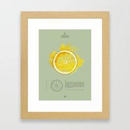 IL LIMONE Framed Art Print