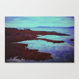 Azurean Expanse Canvas Print
