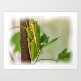Painted Green Tree Frog Art Print