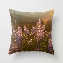 sunset lupin Throw Pillow