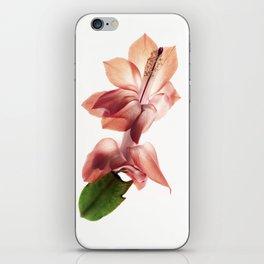 Schlumbergera iPhone Skin