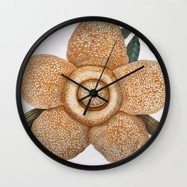 Rafflesia Arnoldii Wall Clock