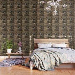 Woodland grey squirrel Wallpaper