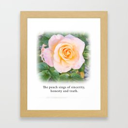 Peach Rose - Tea with Roses Framed Art Print