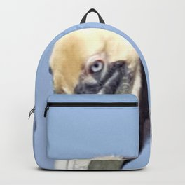 Larry, Curly and Moe Pelicans Backpack