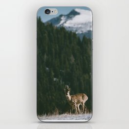 Hello spring! - Landscape and Nature Photography iPhone Skin
