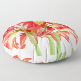 Red Amaryllis in Bloom Floor Pillow