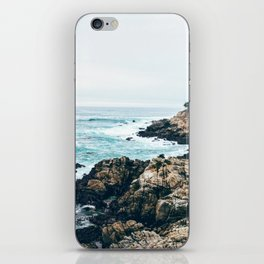 Standing on the Coast iPhone Skin