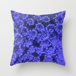 Blue Queen Anne's Lace (Up Close) Throw Pillow
