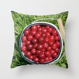 Sour cherrys fruit Throw Pillow