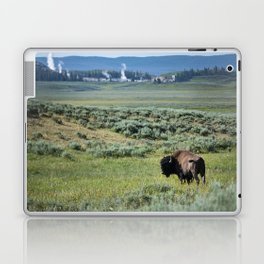 A Bull Bison Heads Towards Thermal Activity in the Hayden Valley of Yellowstone National Park Laptop & iPad Skin