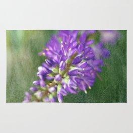 Purple Hebe Macro Rug