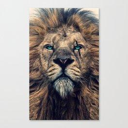 King of Judah Canvas Print