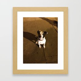 PANCHITO Framed Art Print