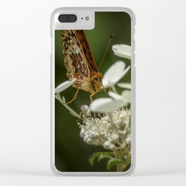 Butterfly on a Hydrangea Clear iPhone Case