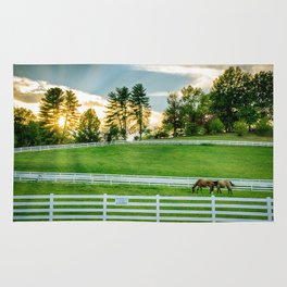Sunrise on the Ranch Rug