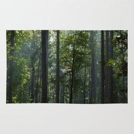 Green forest shrouded the sun. Rug