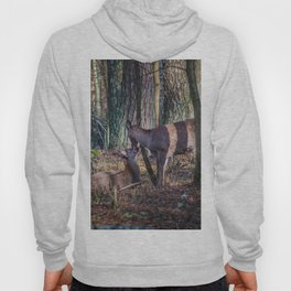 Doe and Fawn Hoody
