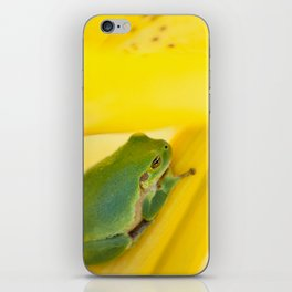 Green Frog on Yellow Lilies iPhone Skin
