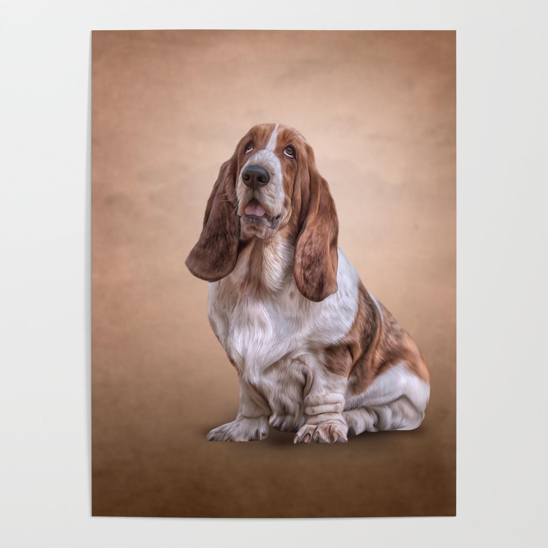 Drawing Funny Basset Hound Dog Poster By Bonidog Society6
