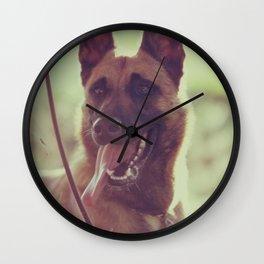Malinios Beauty dog picture Wall Clock