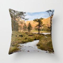 Lake District landscape Throw Pillow