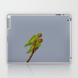 Varied Lorikeets (Psitteuteles versicolor) Laptop & iPad Skin